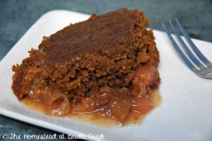 Crockpot Pumpkin Apple Pie Cake - plain - edited_edited-final_edited-final
