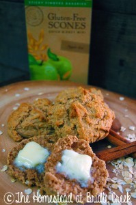 Gluten Free Apple Oat Scones with butter 2