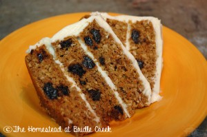 Pumpkin carrot cake - slices_final